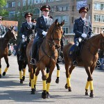 Подразделение конно-постовой службы